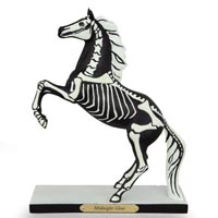 Painted Ponies Special Release Halloween 2014 Midnight Glow 7